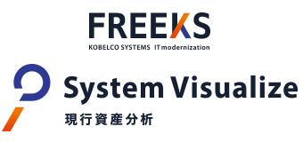 FREEKS System Visualize 現行資産分析